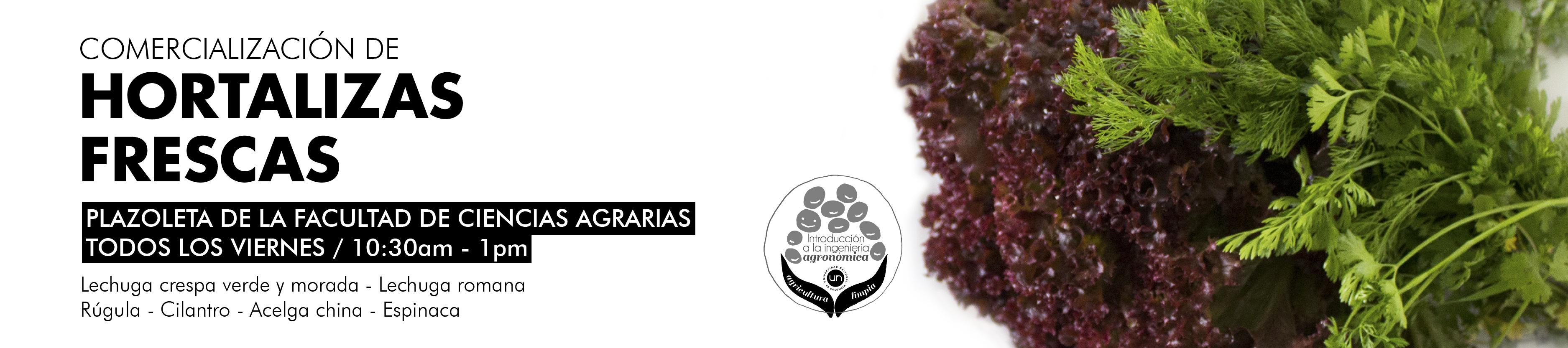 banner hortalizas-01.jpg
