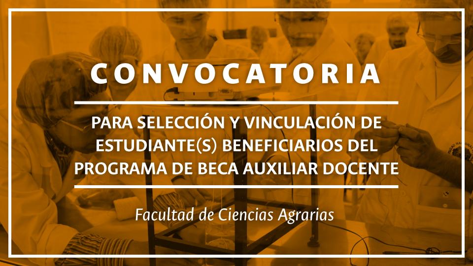 banner_convocatoria_beca_auxiliar_docente_mesa_de_trabajo_1.jpg